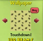 Touchdown!5