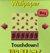 Touchdown!41