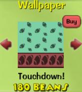 Touchdown!38