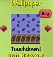 Touchdown!9