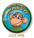 Pin monkey