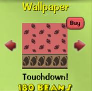 Touchdown!12