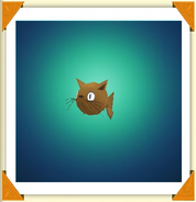 Ttr-fish-cat-fish