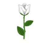 Stinking Rose