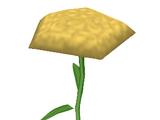 Instant Carnation