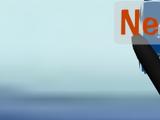 Nelly Snow