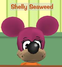 Shelly Seaweed