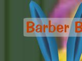 Barber Bjorn
