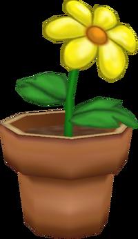 Blooming Bonnet
