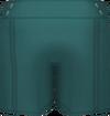 Green Winter Shorts