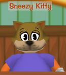 Sneezy Kitty