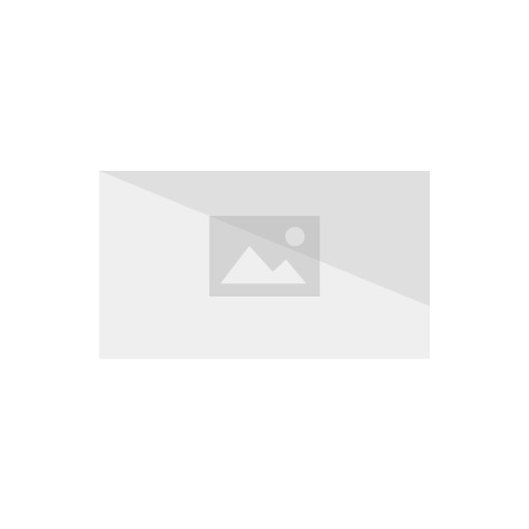 Prominent-looking Plastic Crown in Clarabelle's Cattlelog.