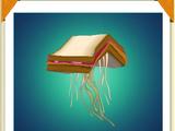 Peanut Butter & Jellyfish