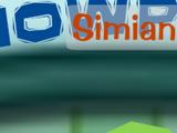 Simian Sam