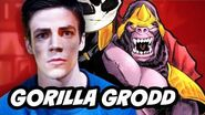 The Flash 2015 - Gorilla Grodd Explained