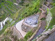 Banaue rice terraces. Terrazas de arroz de Banaue.
