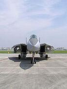 Gruman-F14-Tomcat-01