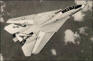 Gruman-F14-Tomcat-05