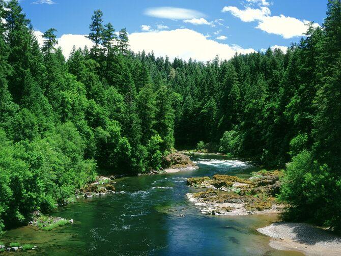 River 001