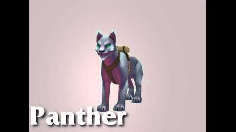 Pets of Torchlight II