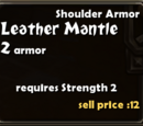 Leather Mantle