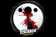 Wikia-Visualization-Main,toribash