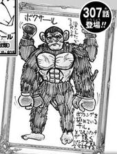 Boxer Ape Submission