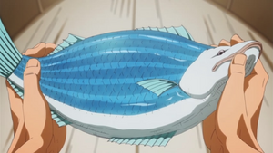 StripedSalmon