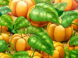 Marshmallow Pumpkin