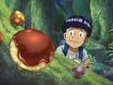 Chocolate Mushroom
