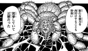 Mohyan's spider form