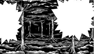 Bosque foretal