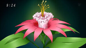 Battle flower