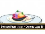 Domlom Fruit