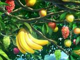 Fruit Parlor Tree