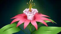 Kwiat Bitewny