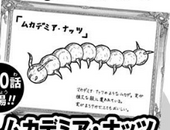 Centipemia Nuts Submission