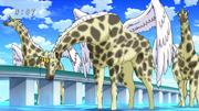 Giraffebird 1
