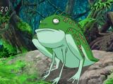 Mors Frog