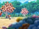 Mięsne Drzewo
