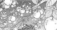 Białe Jabłka (manga)