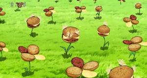 Koniczynoburgery