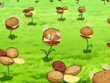 Koniczynoburger