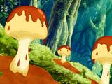 Pudding Trumpet Mushroom