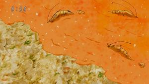 Paląco Ostra Krewetkowa Plaża