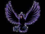 Cuervo Emperador