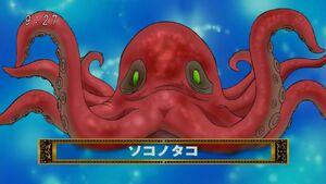 1000px-Bottom Octopus