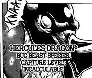 Hercules dragon face