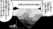 Black Triangle Depth
