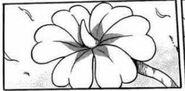 Pacefull Flower